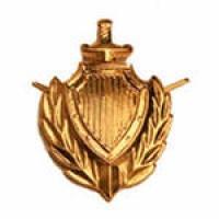 Эмблема петличная МВД золото металл