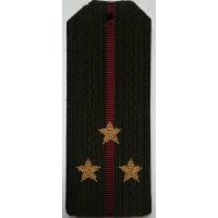 Погоны Внутренние войска с вышитыми золотом звездами старший  лейтенант