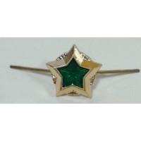 Звезда малая ФССП золото металл