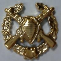 Эмблема петличная пограничные войска с венком золото полиамид