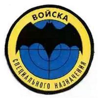 Шеврон Войска специального назначения круглый простой