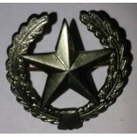 Эмблема петличная общевойсковая с венком защита металл