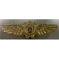 Знак классности офицера ФСО Мастер золотистый