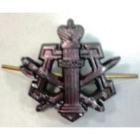 Эмблема петличная ФСИН без венка защита метал