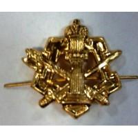 Эмблема петличная ФСИН без венка золото метал