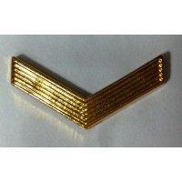 Знак различия ефрейтор полиамид золото