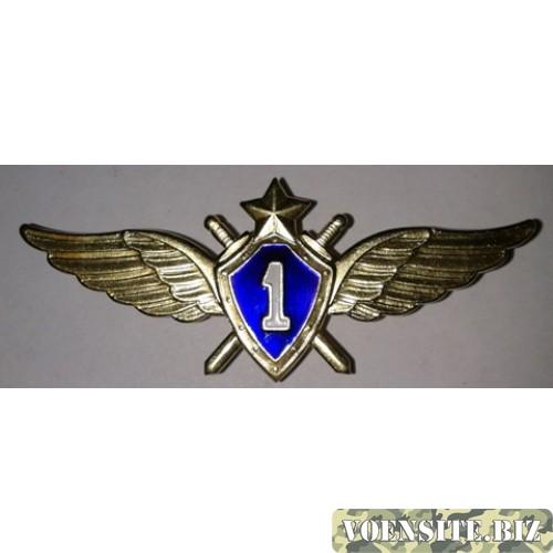 Знак Классности 1 степени ВВС